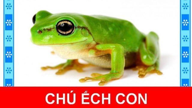 Chú ếch con
