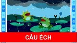 Câu ếch